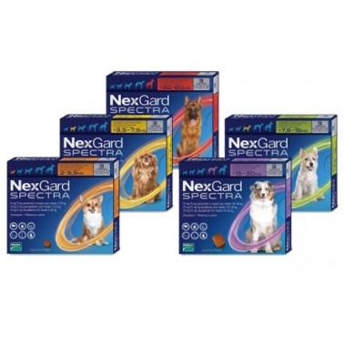 NEXGARD SPECTRA MASTICABLE Comprimidos Antiparasitario para perros